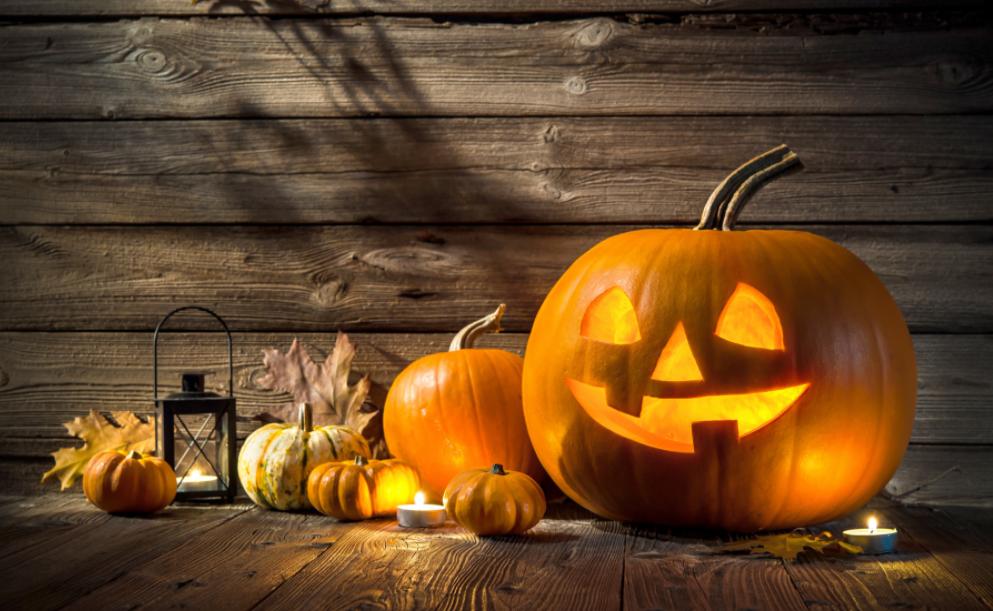 Halloween nên mua Nến bí ngô