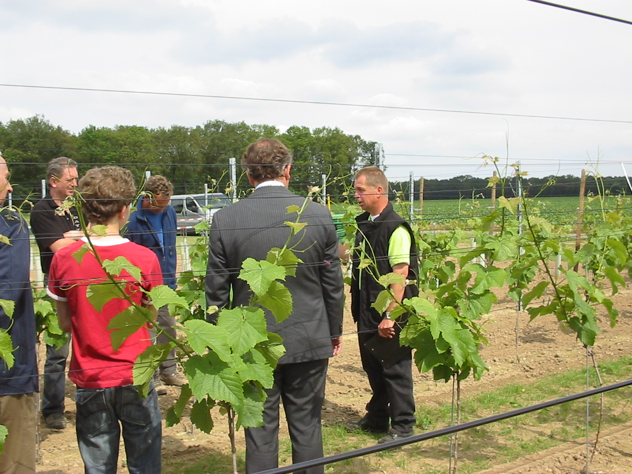 Opening van de wijngaard_foto1