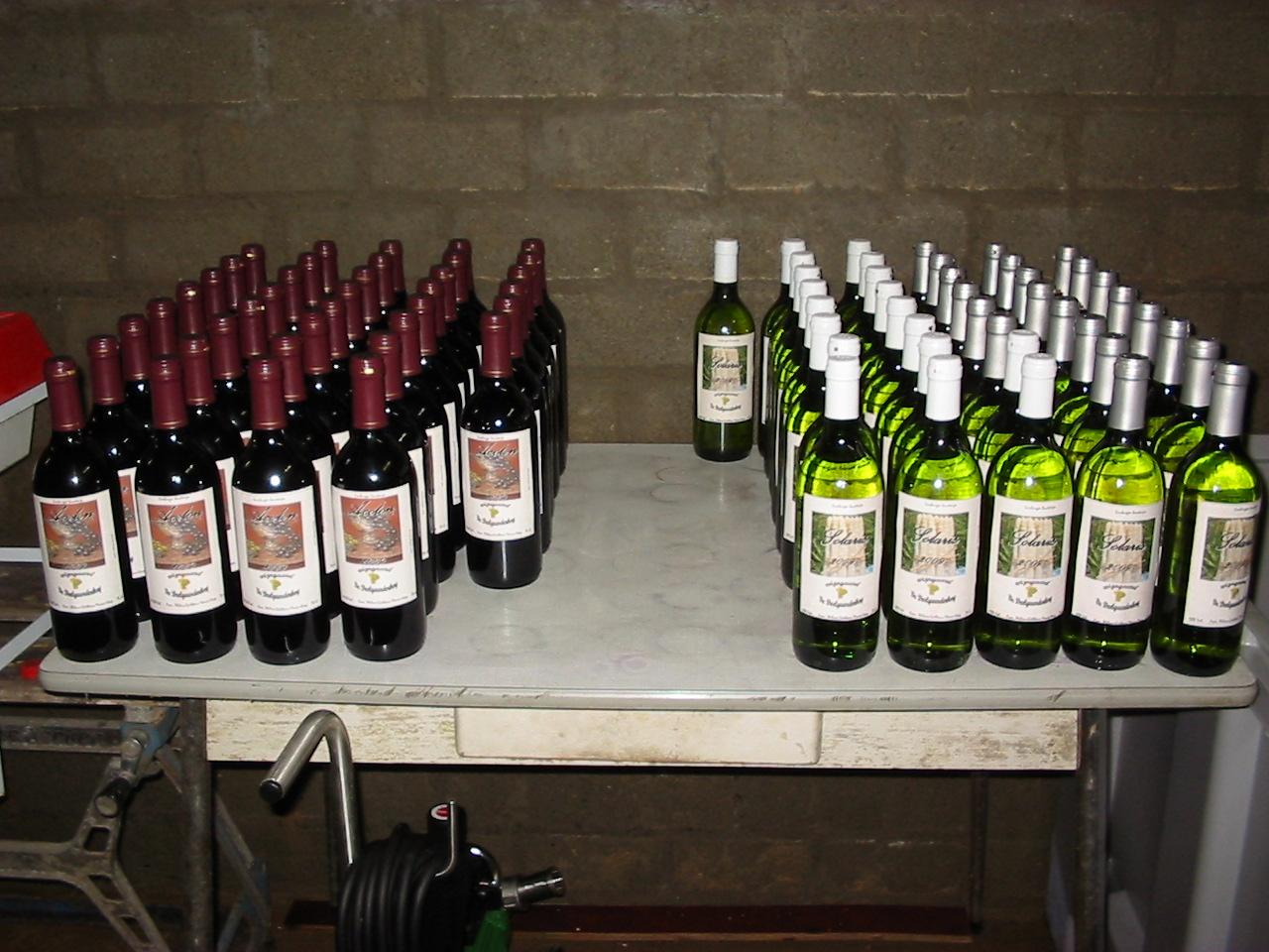 Opening van de wijngaard_foto6