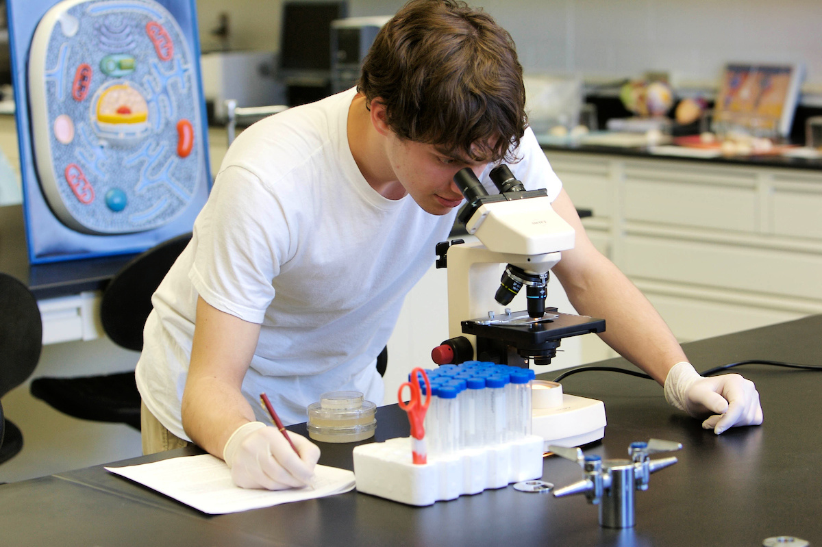 Molecular and Cellular Biology Lab