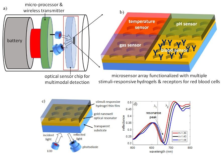 Optical Microarray Biosensor Diagram