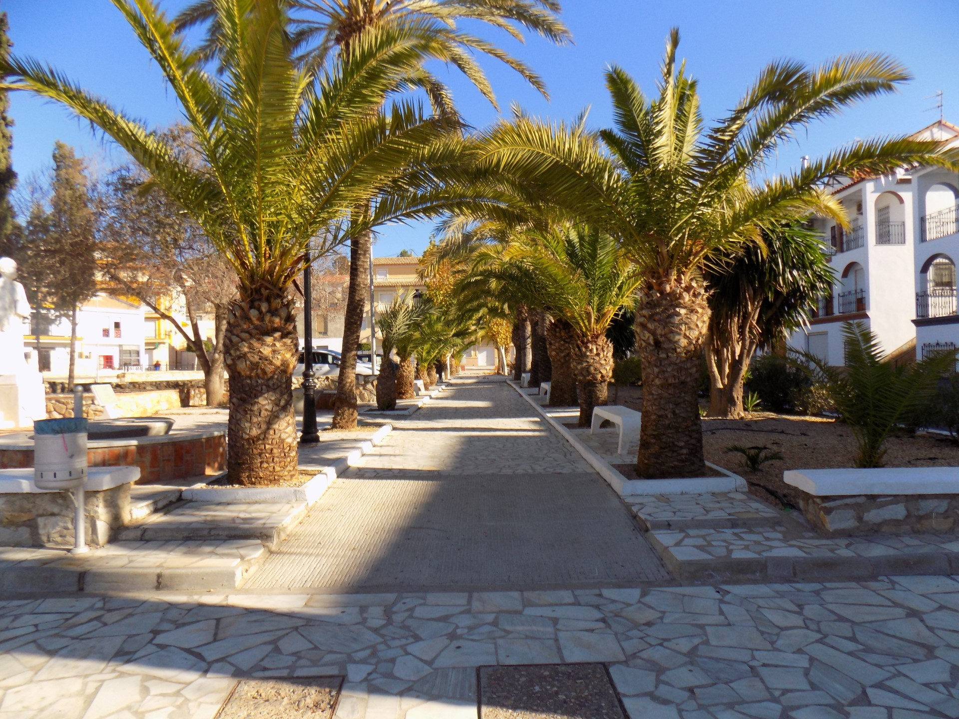Plaza in Arboleas, Almeria